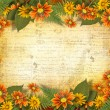 Herbarium of flowers and leaves on the floral background with fr - Stock Photo