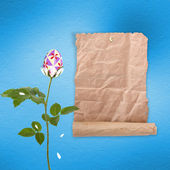 çok renkli yumurta ve çiçek celebrat pastel arka plan — Stok fotoğraf