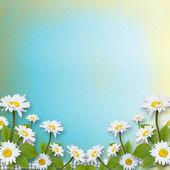 Tarjeta de invitación o felicitación con bouquet de flores — Foto de Stock