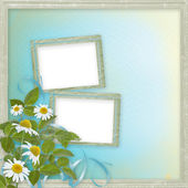 Grunge frames with beautiful daisy for design — Stock Photo