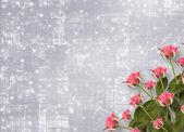 为祝贺或束鲜花邀请卡 — 图库照片