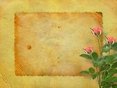 お祝いまたは流束の招待状の古いポストカード — ストック写真