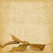 Bright autumn leaves on the abstract background with handwrite t — Stock Photo