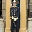 Sweden Royal guards — Stock Photo