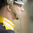 Sweden Royal guards - Stock Photo