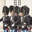 Denmark Royal guard — Stock Photo