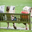 Newspaper readers — Stock Photo #9747853