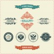 Royalty-Free Stock Vector Image: Vector vintage ornate decor elements. ornaments ribbon stamps