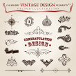 Vector set calligraphic vintage elements and page decoration, pr — Imagen vectorial