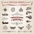 Vector set calligraphic vintage elements and page decoration, pr — Stok Vektör