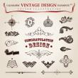 vector instellen kalligrafische vintage elementen en pagina decoratie, pr — Stockvector
