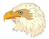 голова орла, изолированные на белом фоне — Cтоковый вектор