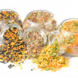 Glass Jars with Assorted Cereals (Lentils, Rice, Split Peas) Isolated on W — Stock Photo
