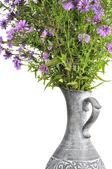 Bouquet de fleurs d'aster rose en pot — Photo