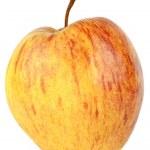 Apple Isolated on White Background — Stock Photo