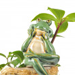 Smiling Green Frog Figurine Sitting on Flower Pot — Stock Photo #8980150