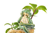 Smiling Green Frog Figurine Sitting on Flower Pot — Stok fotoğraf