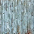 Grungy Wood Background — Foto Stock #9213697