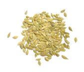 Green Cardamom (Cardamon) Pods — Foto de Stock