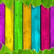 Vibrant Summer Background – Multicolored Wood Planks and Green Leaves — Stock Photo