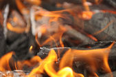Burning Wood Embers with Flames — Stock Photo