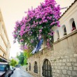 Mediterranean city street - Stock Photo
