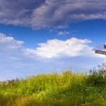 Summer panorama — Stock Photo #8841218