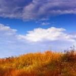 Autumn panorama — Stock Photo #8841236