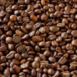 Stock Photo: Coffee grains