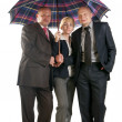 Stock Photo: Image of a business with umbrella.