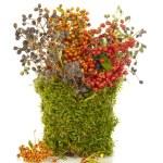 Original design flower bouquet — Stock Photo