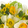 Wedding bouquet with daffodil - Stok fotoğraf
