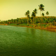 Stock Photo: Mandrem beach in Goa