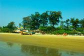 On the Mandrem beach in Goa — Stock Photo
