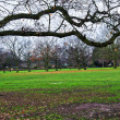 Walpole Park - Stock Photo