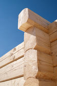 Log home construction detail — Stock Photo