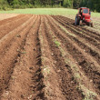 Tractor working a fallow ploughed field — Stock Photo
