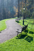 在公园的秋天胡同 — 图库照片