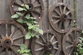 Woden wagon wheels and green leaves — Stock Photo