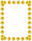Yellow flower frame with copy space — Stockfoto