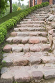 Natural stone steps along a hedgerow — Stock Photo