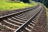 森林区域に鉄道トラックの視点 — ストック写真