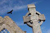 Croce celtica in pietra — Foto Stock