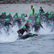 Foto Stock: Triathlon swimmers