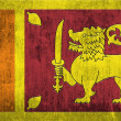 Grunge Flag Of Sri Lanka — Foto de Stock