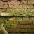 Weathered stained old brick wall — Stockfoto #8612411