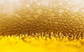 Close up of beer bubbles — Stock Photo