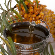 Stock Photo: Oil of sea-buckthorn berries.