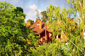 House on a green trees — Stock Photo