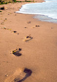 Foot prints on beach — Stock Photo